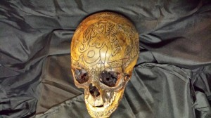 skull REAL carved mermaid front